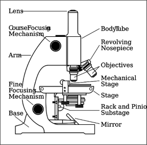 johnny-automatic-microscope-with-labels