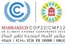 Fuori dagli schemi: a mindset shifting for climate finance