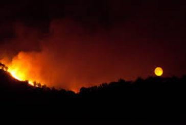 Gli incendi, piaga ambientale senza fine