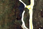 """""""Il filo di Vita"""" di un Poeta"""