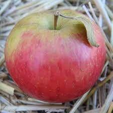 Una mela al giorno….
