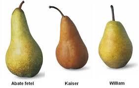 tre tipi di pere